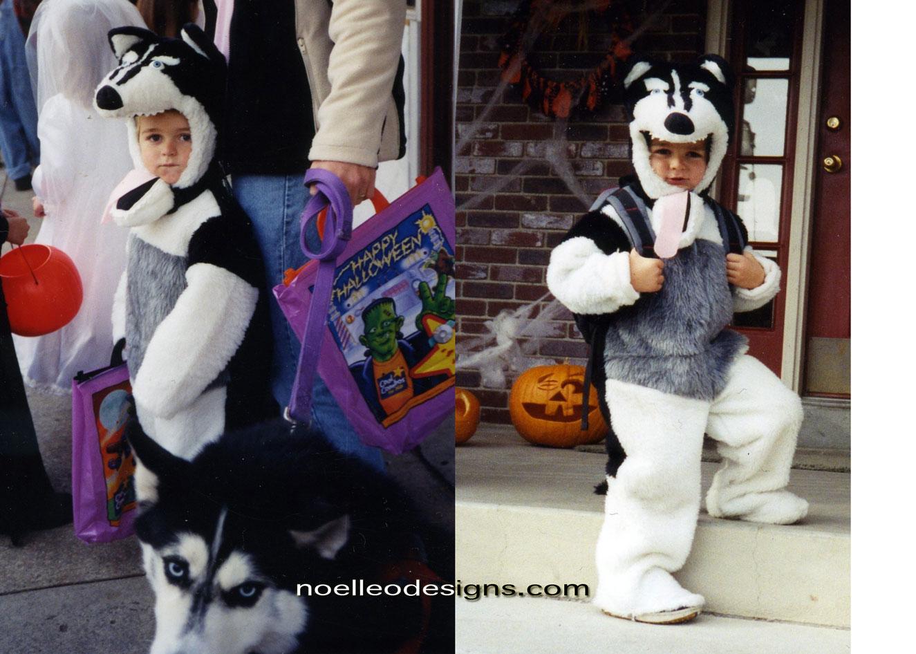 Halloween Costume Gallery siberian husky costume