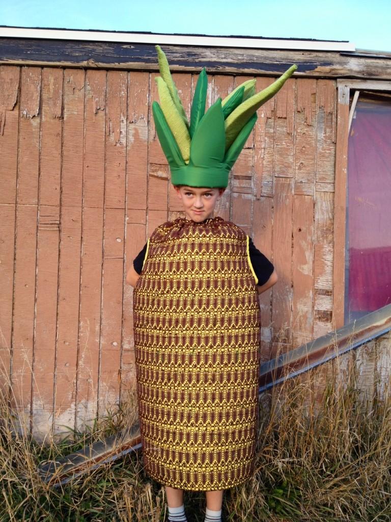 Halloween DIY costumes pineapple costume