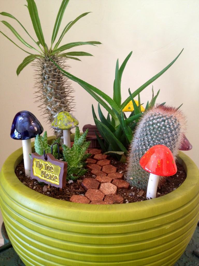 succulent fairy garden planter
