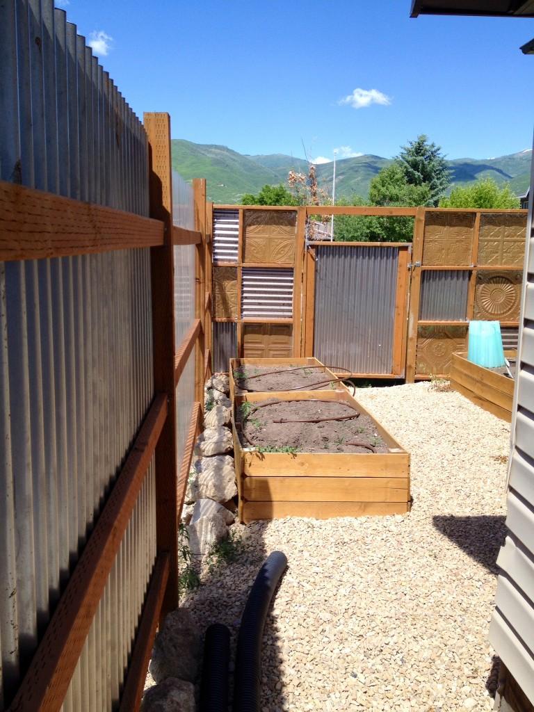 garden backyard area