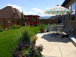 backyard pergola, metal fence