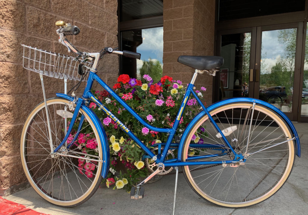 Blue womens Schwinn Collegiate cruiser bike, circa 1982, Wald basket